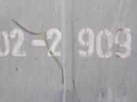 Tokarka karuzelowa Stankoimport 1516 #3
